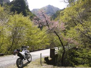 Nobeyama2