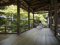 Kyoto0910
